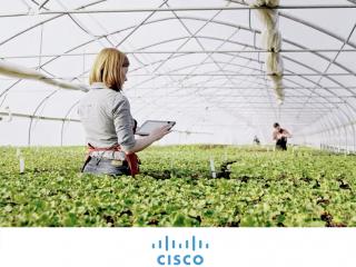 Cisco Edge to Cloud Continuum